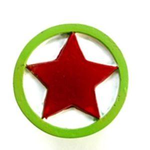 Dörrknopp stjärna grön